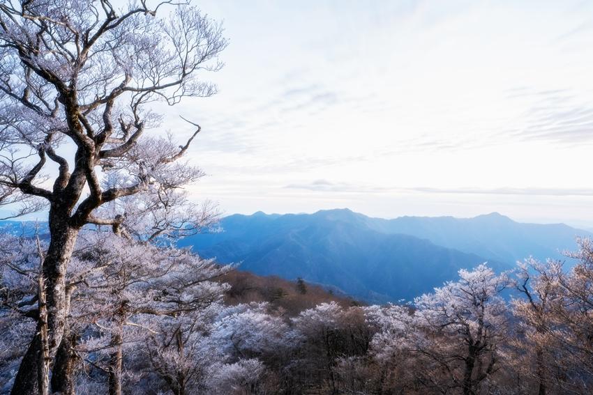 高城山 日の出前