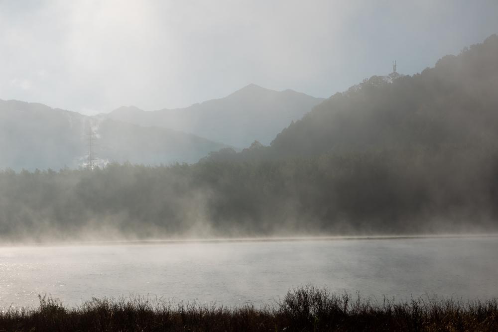 立ち上がる川霧